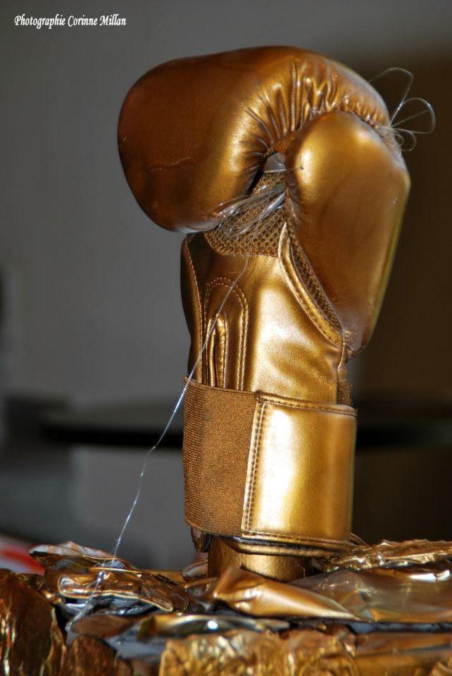 Un gros challenge mais surtout une belle réussite la Coupe de France 2013 de Japan Kick-Boxing